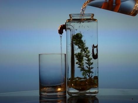 fnoclean-aquariumstm-self-cleaning-aquarium-for-bet