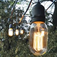 Bulbrite Vintage Bulbs